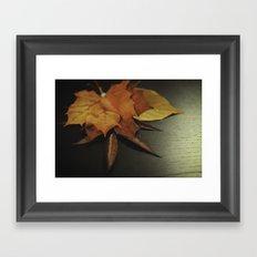 autumn arranged Framed Art Print
