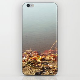 Autumn by the water iPhone Skin