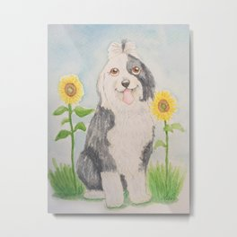 Old English Sheepdog with sunflowers Metal Print