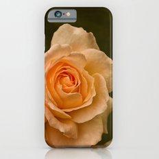 Dew Kissed Rose Floral Slim Case iPhone 6s