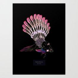 Rhipidura Bionicosa Art Print