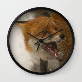 Wild Red Fox In The Snow Wall Clock