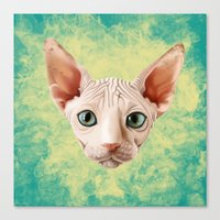 sphynx Canvas Prints featuring Sphynx by Cassidy Dawn