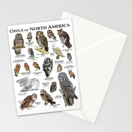 Owls of North America Stationery Cards