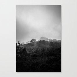 Nature Study I Canvas Print