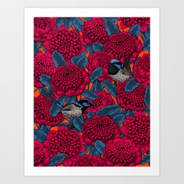Red waratah and fairy wrens  Art Print