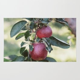 The Apple Orchard No. 2 Rug