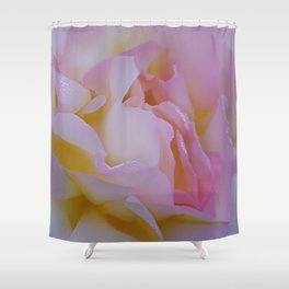 Pink rose petals kissed by raindrops Shower Curtain