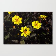 Bee in a Flower Canvas Print