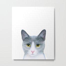 Cat 611 Metal Print