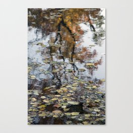 Floating Autumn leaves Canvas Print