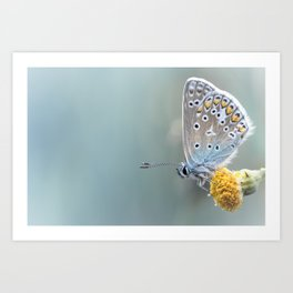 Composition in Yellow and Blue....  Art Print