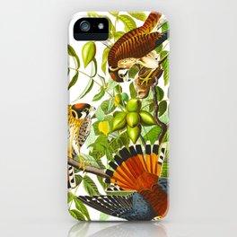 Sparrow Vintage Scientific Bird & Botanical Illustration iPhone Case