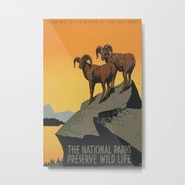 Vintage poster - National Parks Metal Print