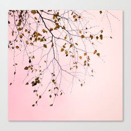 leaves on a pink sky Canvas Print