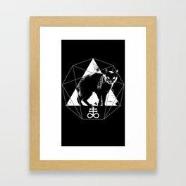 Esoteric - Sulfur Cat Framed Art Print