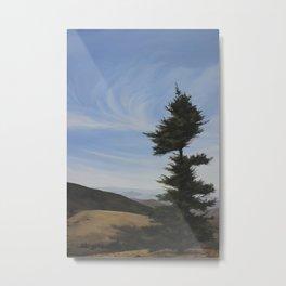 Windblown Tree Metal Print