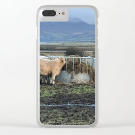 Cows Lunch Kerry Ireland Clear iPhone Case