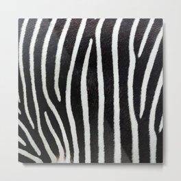 Zebra skin close-up view luxury abstract pattern Metal Print
