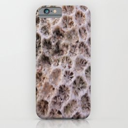 Macro image of a coral rock iPhone Case