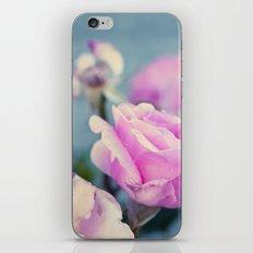 Delicada iPhone & iPod Skin