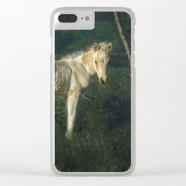 Little Blue-Eyed Filly Clear iPhone Case