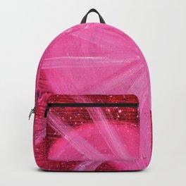 HEARTFUL Backpack