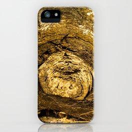 Wood trunk iPhone Case