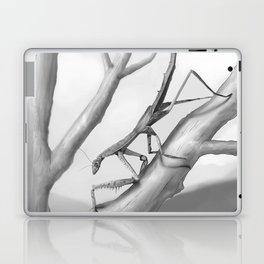 Danuria affinis Habitat Laptop & iPad Skin
