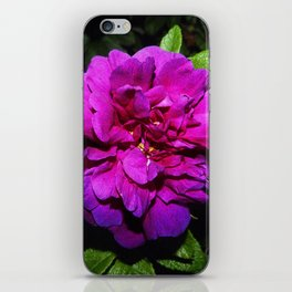 Colour of blooming iPhone Skin