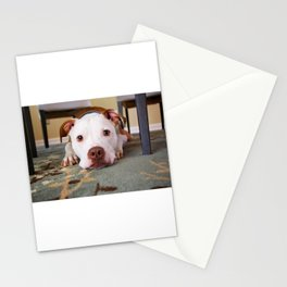 Mans Best Friend is a Dog 86 Stationery Cards