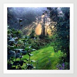 Magic Morning Sunlight Art Print