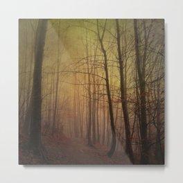 estranged - misty hike Metal Print