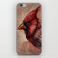 cardinal iPhone & iPod Skins featuring Cardinal by Werk of Art