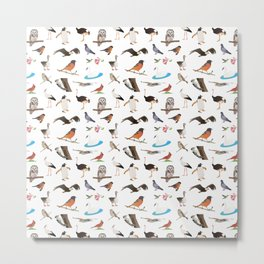 Various Birds Metal Print