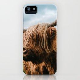 Scottish Highland Cattle - Animal Photography iPhone Case