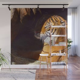 It's the Eye of the Tiger Wall Mural