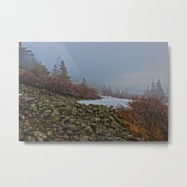 Foggy Summit of Dog Mountain Metal Print