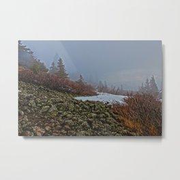 Foggy Summit of Dog Mountain Metal Print