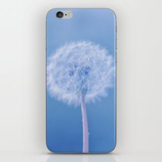 Tranquil Dandelion iPhone & iPod Skin