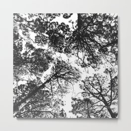Forest landscape photography trees - black and white 1x1 Metal Print