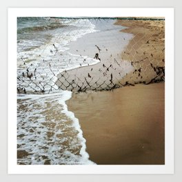 Beach Barrier Art Print