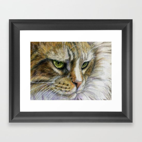 Cat portrait 806 Framed Art Print