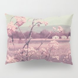 Sweet Spring (Teal Sky, Soft Pink Wildflowers, Rural Cottage) Pillow Sham