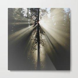 Umpqua Rays Metal Print