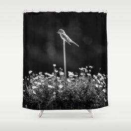 B&W Bird I Shower Curtain