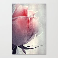 Ice Rose Canvas Print