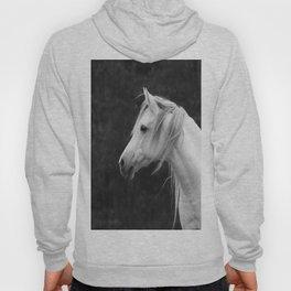 Arabian horse in black and white Hoody