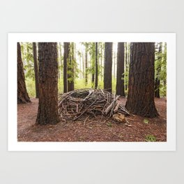 Wild and Woven Art Print