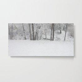 Winter's First Snow Metal Print